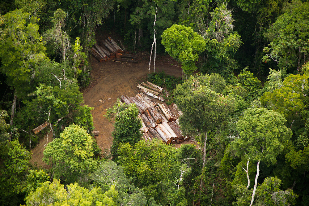 Nov. 13, 2003: Logging of forestland near the Jaurucu River in Para State, Brazil. ©Daniel Beltra