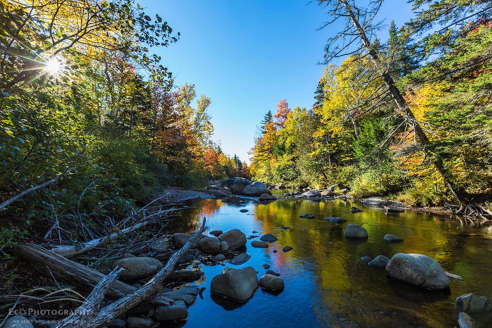 Orbeton Stream in fall. Madrid Township, Maine.