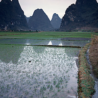 AA01204-04...CHINA - Farm Fields near Yangshuo along the Li River.