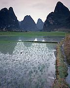 AA01204-04...CHINA - Farm Fields near Yangshuo along the Li River.