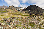 The top of an unnamed glacier is just visible from the entrance to Crow Pass in the Chugach National Forest in Southcentral Alaska. Summer. Afternoon.