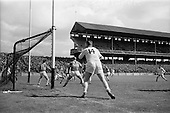 1965 National Hurling League Semi-Final Waterford v Tipperary