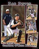 2014 Cardinal O'Hara Baseball