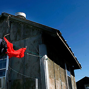 Clothes air out on the line following a long night in the blues clubs in Clarksdale, Mississippi.