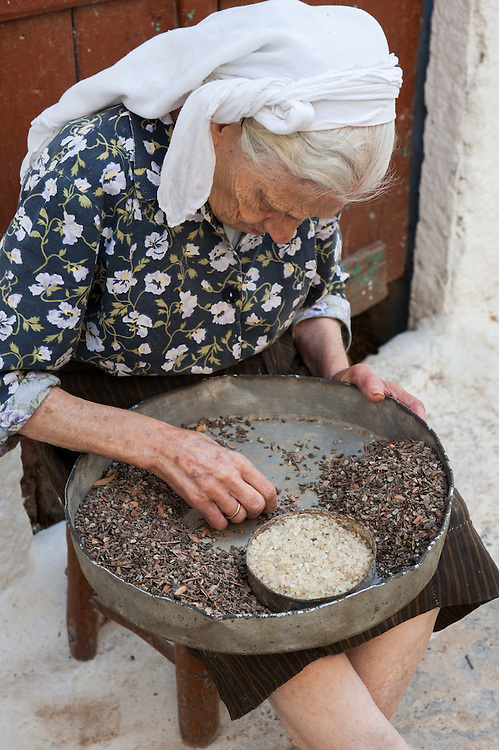 An elderly woman clearing the mastic drops in the medieval village of Pyrgi, Chios, Greece.  The resin of the tree fells on a layer of sand. Once the sand is cleared the solidified mastic drop has to be cleared manually from foreign bodies, chunks of the trunk and small pebbles. <br /> <br /> Pyrgi in Chios is known as the &quot;painted village&quot; on account of the decoration of the houses. The village still keeps its medieval style and together with the other Mastichochoria (Mastic Villages) are in the list of the Intangible Cultural Heritage of Humanity of UNESCO