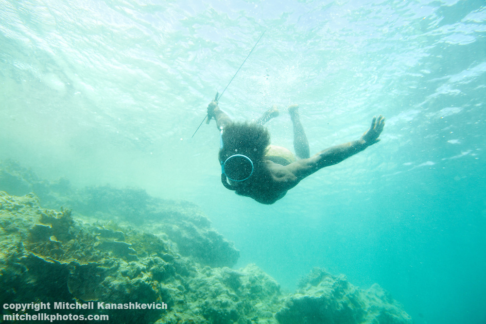 Fish makes up a vast part of the diet of the people of Vanuatu's coastal areas. Freediving and spearfishing are an important way of making a livelyhood for men living in these areas. Rah Lava Island, Torba Province, Vanuatu