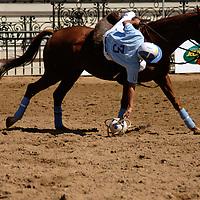 horseball player practising