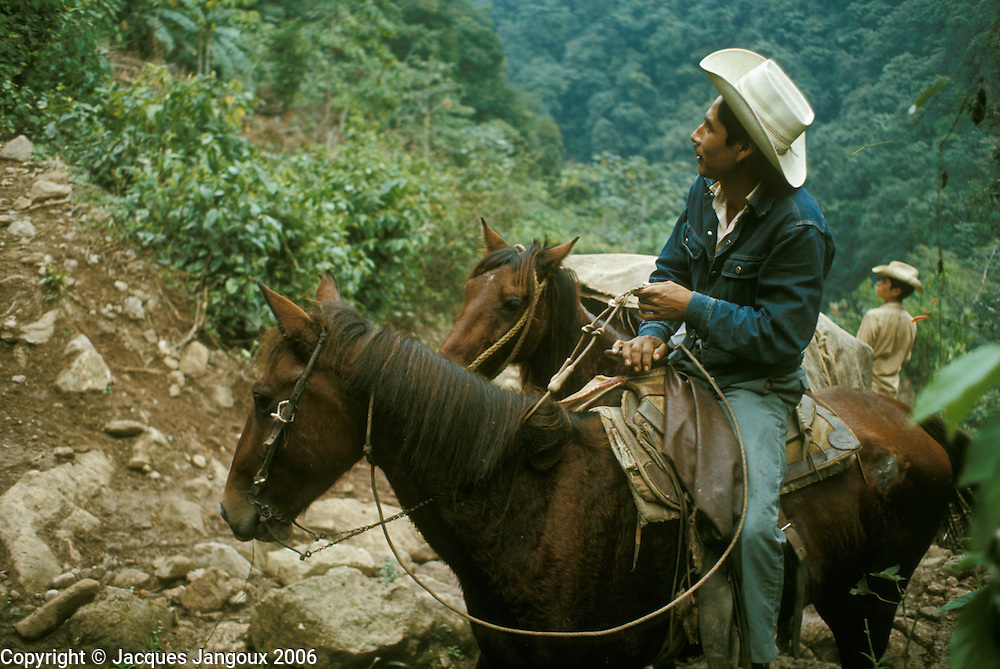 Mexico Puebla State Sierra de Puebla man riding horse on mountain trail