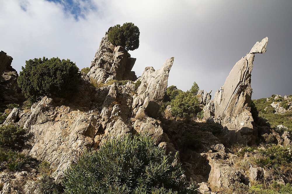 Unusual limestone formations in Talassemtane National Park, in the Rif Mountains, just outside the city of Chefchaouen, Morocco.