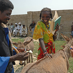 Aifa Aifa chooses a donkey at the bustling Thursday livestock market in Barentu, Eritrea and finishes the deal by paying a government tax before she can take the donkey home August 30, 2006.    (Photo by Ami Vitale)