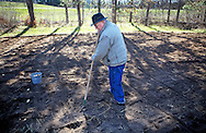 2011-Jerry Apps planting potatoes on his Waushara County Farm. Photo Steve Apps.