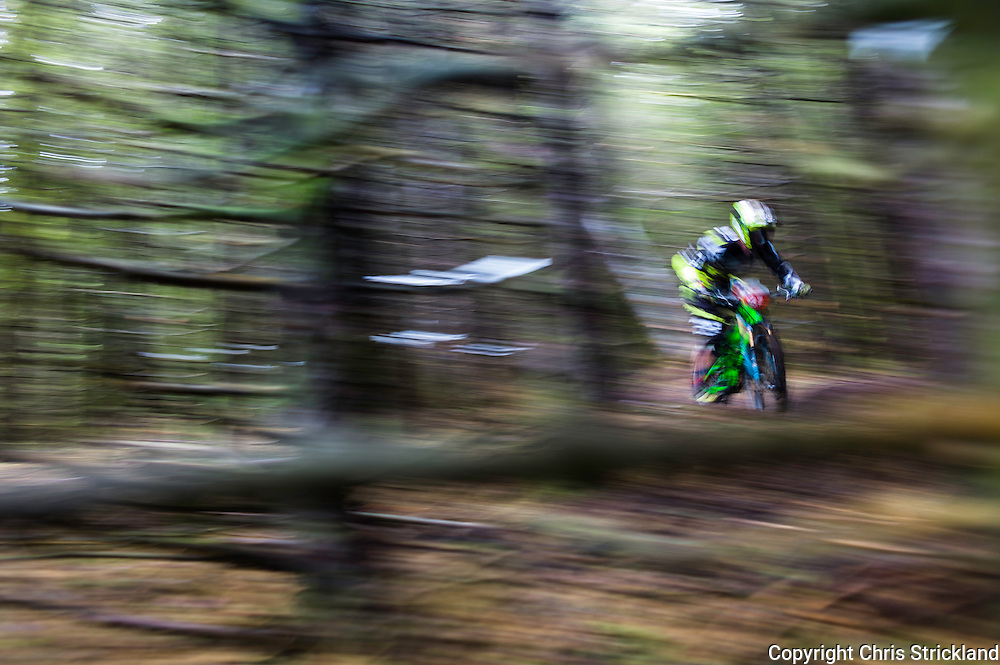 Glentress, Peebles, Scotland, UK. 31st May 2015. Tom Maes in action on Day Two of The Enduro World Series Round 3 taking place on the iconic 7Stanes trails during Tweedlove Festival.
