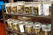 Several varieties of marijuana buds are displayed for sale at a medical marijuana center in Denver April 2, 2012.  With Colorado voters set in November to decide whether to defy the federal government and legalize marijuana for recreational use under state law, the enforcement division could play a key role in bringing a black market pot trade out of the shadows.  REUTERS/Rick Wilking (UNITED STATES)