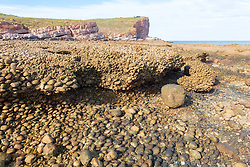 Conglomerate rock formations form a shelf on the south side of Macleay Island on the Kimberley coast.