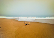 Charlestown Rhode Island beach on a foggy autumn day.