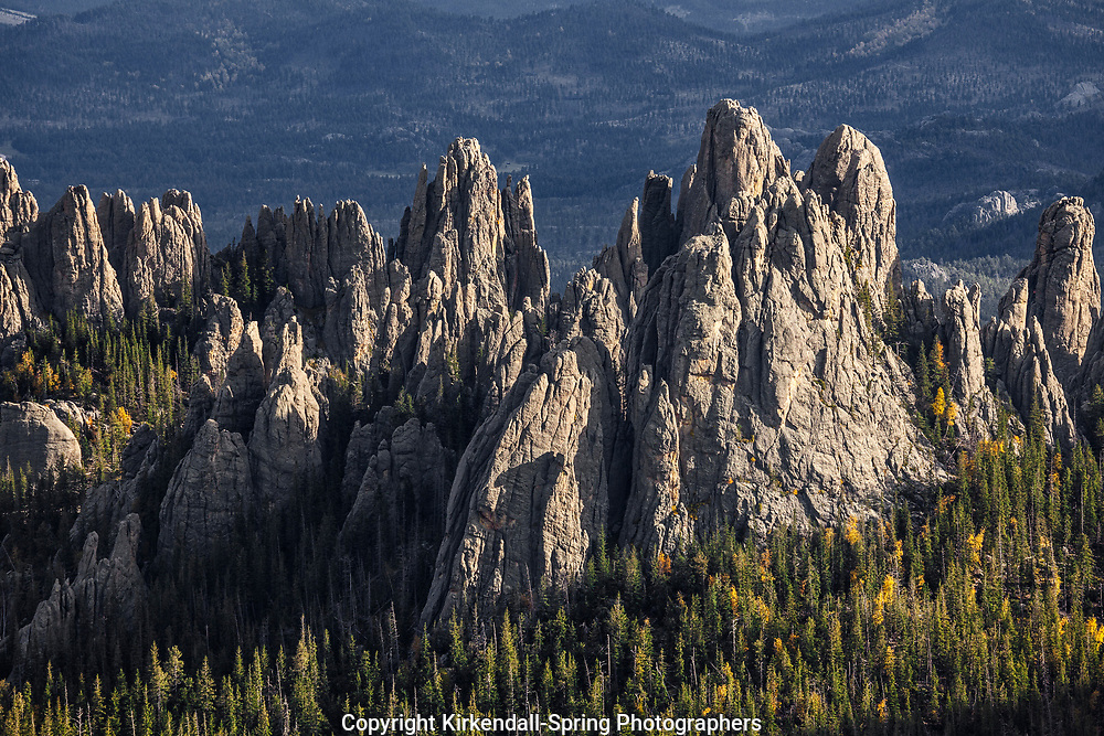 SD00039-00...SOUTH DAKOTA - The Cathedral Spires in Custer State Park.