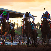 November 01 2014: Bayern , ridden by Martin Garcia and trained by Bob Baffert, wins the Breeders' Cup Classic (G1) at Santa Anita Park in Arcadia, California on November 1, 2014.  Alex Evers/ESW/CSM