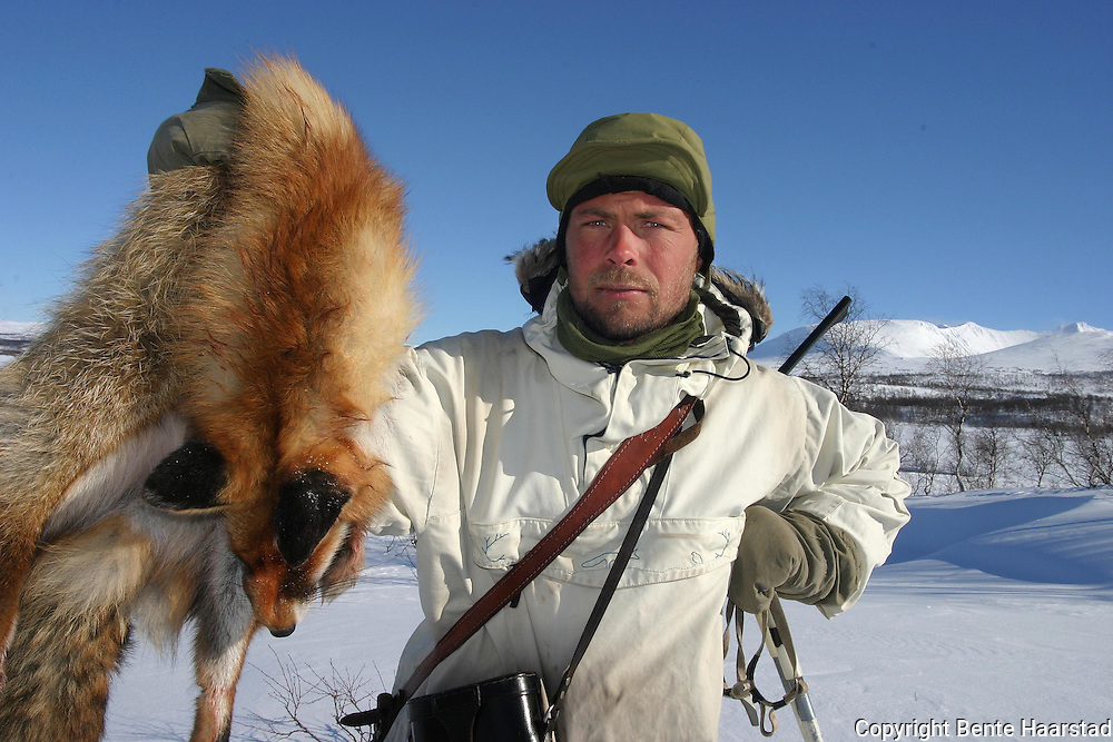 Tommy Sandal is a professioanl hunter. Engaged by norwegian communities (Selbu, Tydal, Røros og Holtålen) to hunt red fox. The aim is to try to save the arctic fox living in this area from extinction. The mountains Sylene in the back.