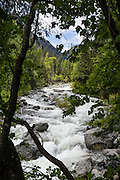 Ingalls Creek Trail, Wenatchee National Forest, between Leavenworth and Blewett Pass, in Washington, USA.