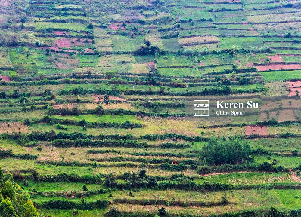 Farmland in the mountain, southwest Uganda