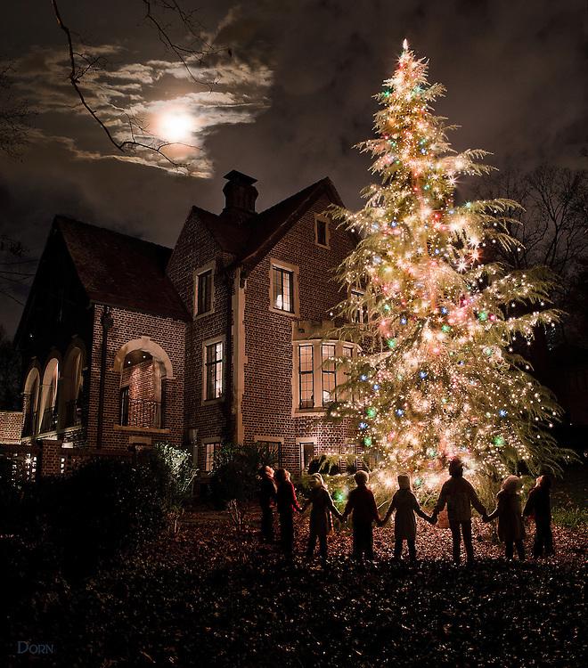 HammerSmith Holiday Tree