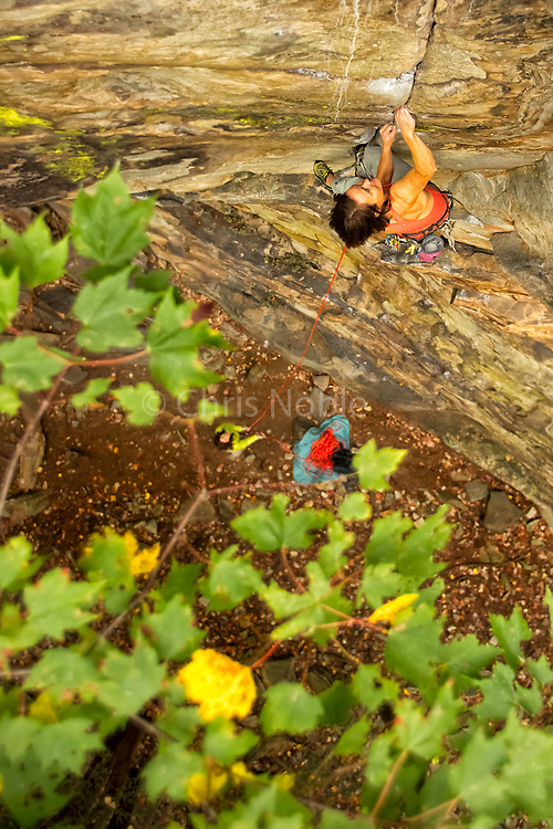 "Elaina Arenz climbing ""Trojans"" 11c, Lower Meadow, The New River Gorge"