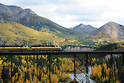 Alaska Railroad Train crossing the Nenana River  in Denali National Park