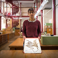 Herbarium, Kew Gardens