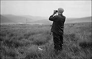 2000 Scotland, Hound Dog Day