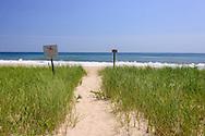 Path Through Dunes to Beach, East Hampton, NY