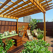 Brooklyn Rooftop Terrace with View