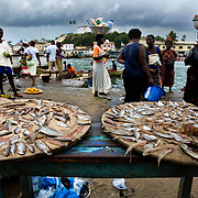 Fish is laid out for sale at the market in Elmina, about 130km west of Ghana's capital Accra on Thursday April 9, 2009.