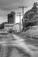 Black-and-white photograph of Mennonite farms in Shenandoah Valley.