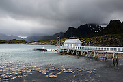 Images from the Lofoten Islands in arctic Norway at midsummer; this is a fish farm at the Lofoten Aquarium near Kabelvåg