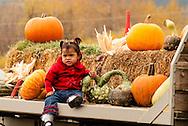 Halloween, girl, kids, Pumpkins, Squash, Bozeman, Montana