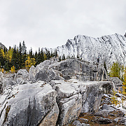 Mount Chester rises above the Elephant Rocks and yellow larch trees in Peter Lougheed Provincial Park, Kananaskis Country, Alberta, Canada. The Elephant Rocks are beautifully eroded limestone blocks of the Livingston Formation that have tumbled from slopes above. Larches are deciduous conifers in the genus Larix, in the family Pinaceae. Chester Lake is a delightful hike of 5.2 miles round trip with 1000 ft gain through larch forest. Extending the hike to Three Lakes Valley is 7.8 miles RT with 1800 ft gain to a lake-dotted limestone barrens. Kananaskis Country is a park system in the Canadian Rockies west of Calgary. This panorama was stitched from 8 overlapping photos.