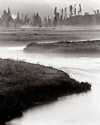 BW01886-00...WYOMING - The Gibbon River in Yellowstone National Park. This is an Ilford Delta 100 4x5 film image. Exposure 12 sec. f64.