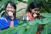 Two malaysian girls smelling wild ginger, Sepilok, Sabah