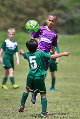 29mar15-U9/U10 Jesters Elites