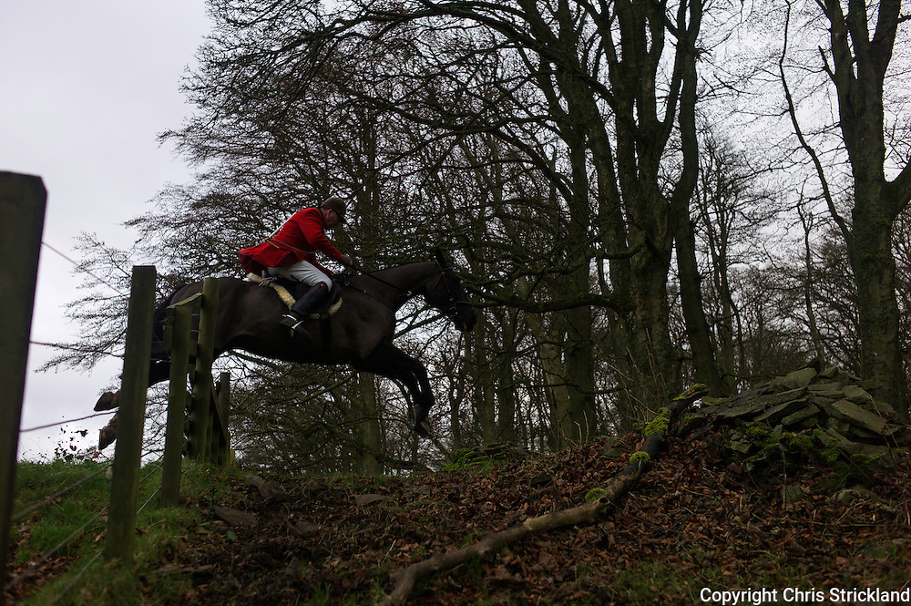 Clive Richardson MFH of the Jedforest Hunt takes a hunt jump entering woodland.