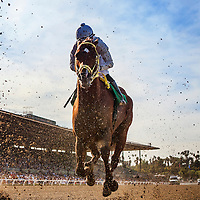 Cyclometer, ridden by  Joe Talamo  during the San Carlos Stake Stakes (G2) at Santa Anita Park on March 8, 2014 in Arcadia, California. (Photo by Evers/Eclipse Sportswire)\
