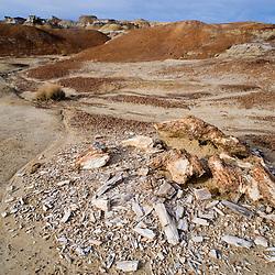 Bisti/De-Na-Zin Wilderness Area, New Mexico