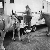 .Christy-View Arena Invitational Draft Horse Hitch Show.