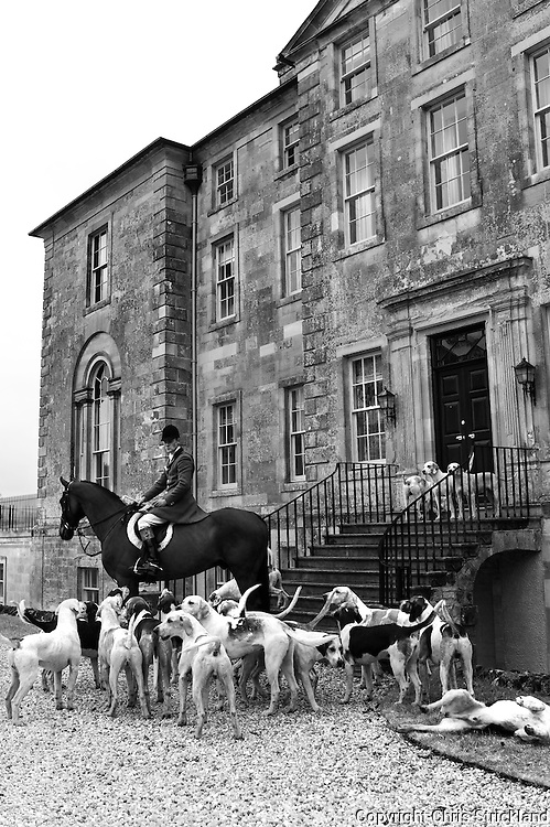 Huntsman Johnny Richardson of the Jedforest Hunt with hounds at Edgerston House.