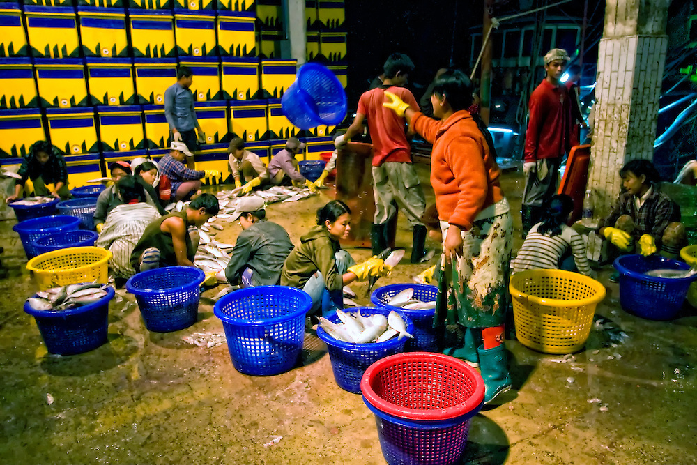 Wholesale Fish Market, Yangon, Myanmar.