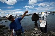 Men fishing in Odaiba