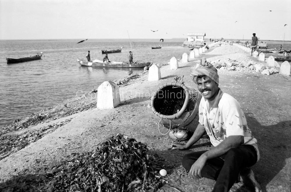 Fisherman at harbour in Jaffna.