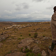 10 May 2011, Ha Tsekana Village, Semonkong Community Council, Lesotho. Moshoeshoe Matse (15) is a shepherd and has never attended school.