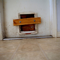 TAMPA, FL -- March 22, 2011 -- A doggie door is sealed from the inside in North Port, Fla., 2011.  A recent study showed that one and five homes in the state of Florida is vacant.