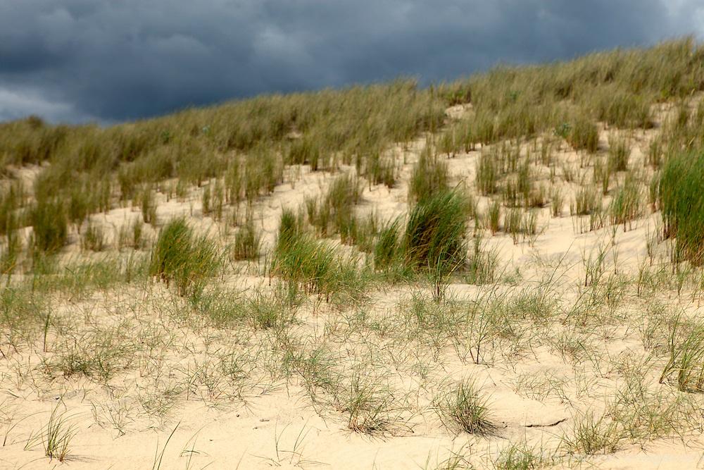 Europe, Ireland, Brittas Bay. Dunes and Dark Clouds.